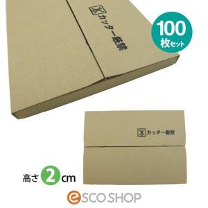 薄型ダンボール箱 厚さ2cm DM便対応サイズ 100枚セット(メール便対応 ヤマト DM便 ネット販売 ゆうパケット 送る 郵便ポスト 梱包箱)(送料無料)|escoshop