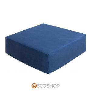 リビング座布団 Amaretto 長方形タイプ ブルー 45×40cm(cn-60r)(低反発 クッション 座布団 四角 角型)(送料無料)(同梱不可)(代引不可)(メーカー直送)|escoshop