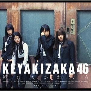 欅坂46/風に吹かれても《TYPE-B》 【C...の関連商品6
