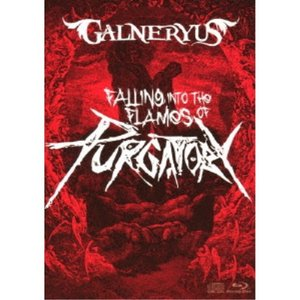 GALNERYUS/FALLING INTO THE FLAMES OF PURGATORY《通常版...