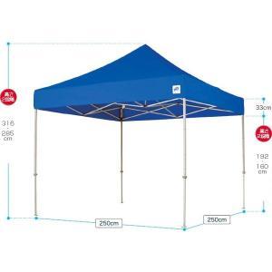 テント ワンタッチ タープテント 2.5m×2.5m EZ-UP DELUXE DX25 スチール製フレーム 名入れ料込 送料無料 頑丈プロ向け 簡単設置  日除け 日よけ|esheetpro|02