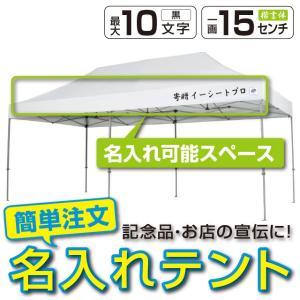 テント ワンタッチ タープテント 3m×6m EZ-UP DELUXE DX60 スチール製フレーム 名入れ料込 送料無料 頑丈プロ向け 簡単設置  日除け 日よけ|esheetpro