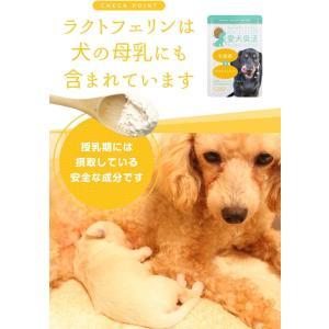 愛犬臭活デンタルヘルスケア 15g ペット サプリメント 口 臭い おやつ 食事にかける 粉末タイプ|eshimi404
