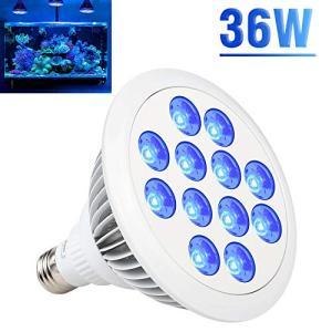 Esbaybulbs led 水槽ライト アクアリウムライト 水草育成 植物育成ライト 36W相当 青色光 口金E26 水槽照明 観賞魚 多|eshop-smart-market