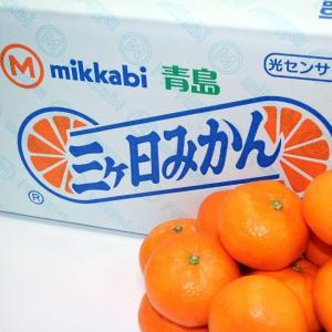 三ケ日みかん 10kg 豊洲 産直 esmile-yh