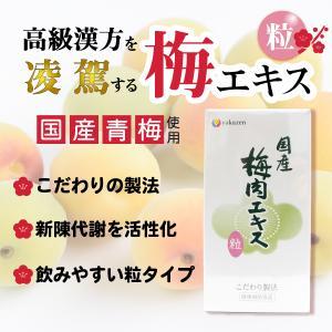 梅肉エキス 梅エキス 粒 国産梅使用 こだわり製法 約600粒・120g esndirect