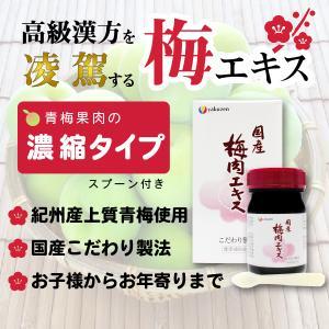 梅肉エキス  国産 こだわり製法(90g) 青梅果肉の濃縮タイプ esndirect