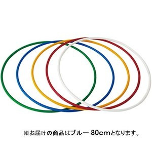 ダンノ(DANNO) ダイエットフラリング80 ブルー D336B フィットネス用品 フラフープ|esports