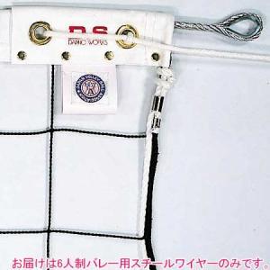 ダンノ(DANNO) 6人制バレー用スチールワイヤー φ4.5mm×15.2m D6407 体育器具 用品 バレーボールネット 備品 esports