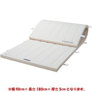 三和体育(SANWATAIKU) 合成スポンジマット 9号 90×180×5cm S-9600 設備 用具 体操用品 マット