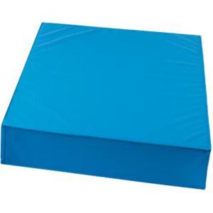 三和体育(SANWATAIKU) カラーウレタン補助マット 屋内外兼用 ブルー S-8531 学校体育 用品 跳び箱 平均台 補助具