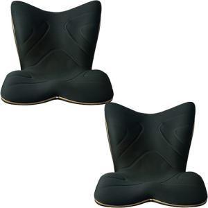 エムティージー(MTG) スタイルプレミアム ブラック 2個セット 腰 姿勢 ボディライン 美容 くびれ