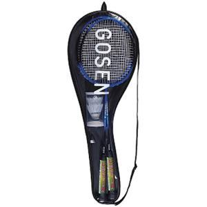 ゴーセン(GOSEN) バドミントン セット レジェンダリー9 BL ブルー MBL9S バドミントンラケット 張り上げ済み 初心者用 レジャー用 ピクニック|esports