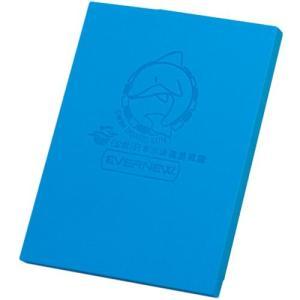 エバニュー(EVERNEW) スイムボードSUNRスクエア EHA017 青 水泳 プール ビート板 スイミング esports