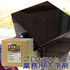 エフロクリーナー 20kg(キュービテナー入り)ES-101 ビアンコジャパン特約代理店|esteem-direct