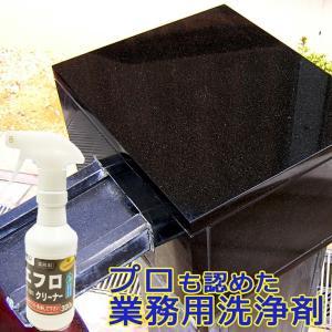 エフロクリーナー 300g(スプレートリガー付)ES-101 ビアンコジャパン特約代理店|esteem-direct