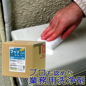 ビアンコジャパン フッソコート 20kg(キュービテナー)FS-101 ビアンコジャパン特約販売店|esteem-direct