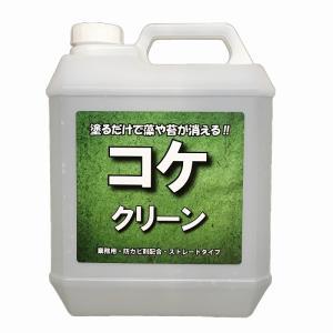 HORIE 苔・藻・カビ発生抑制剤 コケクリーン 4kgポリ容器入り|esteem-direct