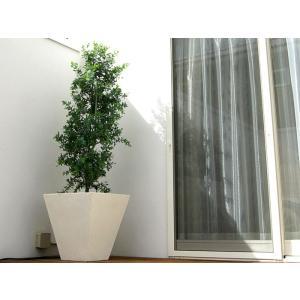 プランター 植木鉢 大型 ファイバープランター ガンマ 45×45×45cm  ガーデニング 園芸用品 estoah 02