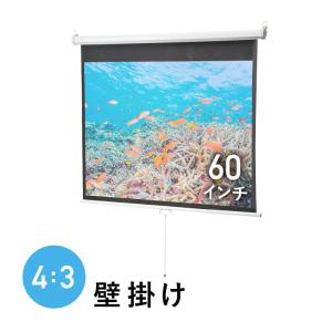 プロジェクタースクリーン 60インチ 吊り下げ 天井 スプリング ロール 壁掛け ホームシアター マット 4:3 EEX-PST1-60 ネコポス非対応|esupply