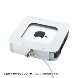 Mac miniセキュリティ eセキュリティ 組み合わせセキュリティ 盗難防止 SLE-21SMM ...