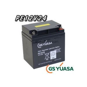PE12V24 ジーエス・ユアサ(GS YUASA) ポータラックPEバッテリー