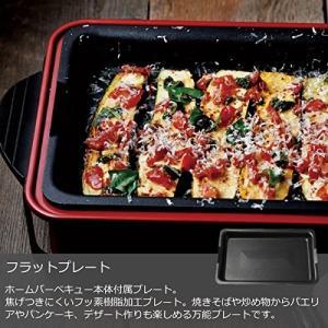 recolte HOME BBQ レコルト ホームバーベキュー + セラミックスチーム深鍋 + たこ...