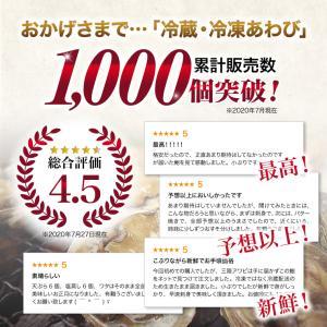 活 アワビ あわび 鮑 (高級 養殖)1個50〜60g  ギフト 海鮮BBQ バーベキュー ((冷蔵)) etizentakaraya 03