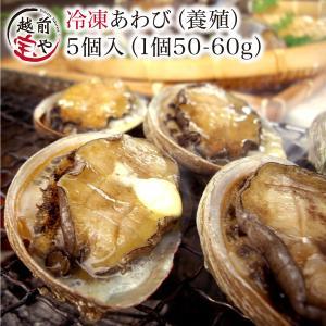 アワビ あわび 鮑 (高級 養殖) 5個入(1個50〜60g) ギフト 海鮮鍋 セット 海鮮グルメ 海鮮おせち 海鮮丼 おせち バーベキュー BBQ ((冷凍))|etizentakaraya