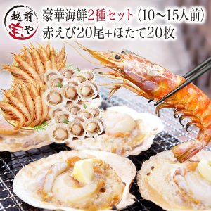 海鮮バーベキューセット BBQ 詰め合わせ 2種 生 赤えび...
