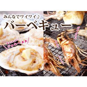 海鮮バーベキュー 海鮮セット 福袋 詰め合わせ 2種 生 赤えび 10尾 ほたて 10枚 セット (5〜7人前)  ギフト 海鮮鍋 海鮮丼 おせち バーベキュー BBQ*冷凍*|etizentakaraya|12