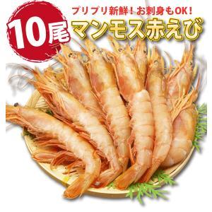 海鮮バーベキュー 海鮮セット 福袋 詰め合わせ 2種 生 赤えび 10尾 ほたて 10枚 セット (5〜7人前)  ギフト 海鮮鍋 海鮮丼 おせち バーベキュー BBQ*冷凍*|etizentakaraya|04
