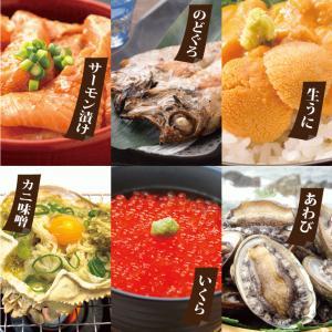ギフト 海の宝箱 海鮮 盛りかご 6種セット のどぐろ 入り 海鮮詰合せ 福袋 いくら うに カニ サーモン かに *冷凍*|etizentakaraya|02