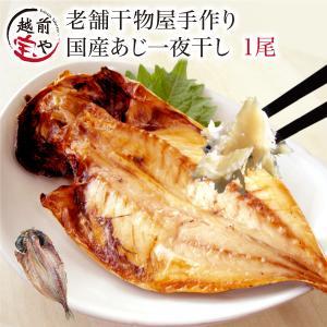 干物  越前産 アジ あじ 鯵 1尾 1パック 真空パック 一夜干し ((冷凍))