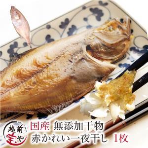 干物 越前産 カレイ 1枚入り 真空パック 一夜干し ((冷凍))