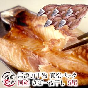 干物 越前産 サバ さば 鯖 5尾 干物セット 真空パック 一夜干し ((冷凍))