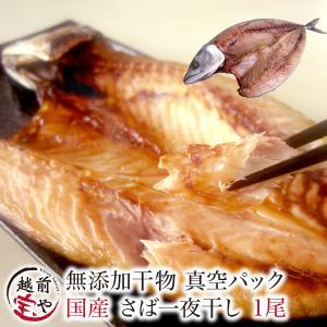 干物  越前産 サバ さば 鯖 1尾 真空パック 一夜干し ((冷凍))