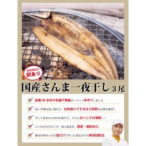 干物 さんま サンマ 秋刀魚 開き 一夜干し 干物セット 3尾入 訳あり  ((冷凍)) etizentakaraya 02