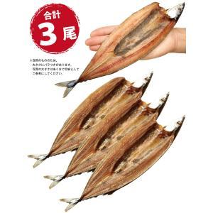 干物 さんま サンマ 秋刀魚 開き 一夜干し 干物セット 3尾入 訳あり  ((冷凍)) etizentakaraya 05