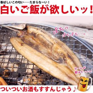干物 さんま サンマ 秋刀魚 開き 一夜干し 干物セット 6尾入 訳あり  ((冷凍)) etizentakaraya 03