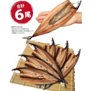 干物 さんま サンマ 秋刀魚 開き 一夜干し 干物セット 6尾入 訳あり  ((冷凍)) etizentakaraya 05