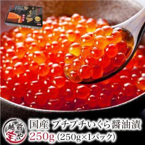 いくら 醤油漬け 250g イクラ 北海道産 笹谷商店 鮭 ((冷凍)) |etizentakaraya