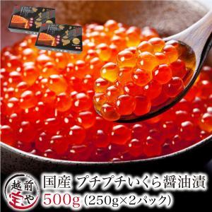 ブランド いくら 醤油漬け 500グラム  北海道産 笹谷商店 鮭 送料無料((冷凍)) |etizentakaraya