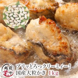 牡蠣 かき カキ 生 広島産 1.0kg L・2Lサイズ (30粒前後入) 加熱用 セット ギフト ...