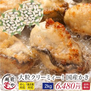 牡蠣 かき カキ 生 広島産 2.0kg L・2Lサイズ (...