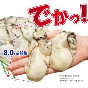 牡蠣 かき カキ 生 広島産 特大 400g (11粒前後入)  加熱用 セット 海鮮BBQ バーベキュー  ((冷凍)) etizentakaraya 03