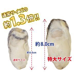 牡蠣 かき カキ 生 広島産 特大 400g (11粒前後入)  加熱用 セット 海鮮BBQ バーベキュー  ((冷凍)) etizentakaraya 04