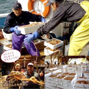 セイコガニ 甲羅盛り 1個(単品) かに カニ 蟹 せいこがに 香箱ガニ せこがに 越前ガニ  香箱ガニ ((冷凍)) etizentakaraya 12