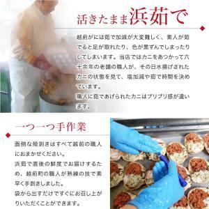 セイコガニ 甲羅盛り 1個(単品) かに カニ 蟹 せいこがに 香箱ガニ せこがに 越前ガニ  香箱ガニ ((冷凍)) etizentakaraya 13