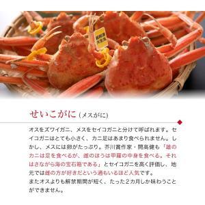 セイコガニ 甲羅盛り 1個(単品) かに カニ 蟹 せいこがに 香箱ガニ せこがに 越前ガニ  香箱ガニ ((冷凍)) etizentakaraya 06